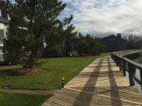 Charles Cove | Norwalk, CT